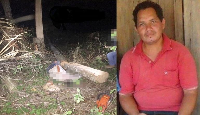 Lamentável: Homem morre após árvore cair sobre sua cabeça na zona rural de Rondônia