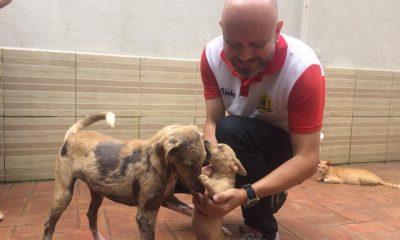 Palitot entrega ração para ONG animal