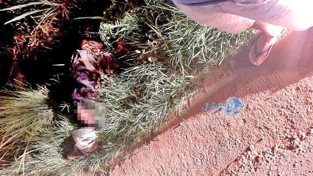 Motociclista morre quebra-molas BR-364
